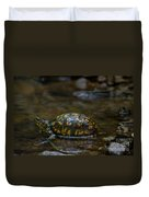 Eastern Box Turtle Duvet Cover