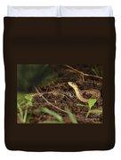 Eastern Garter Snake - Checkered Coloration Duvet Cover