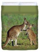Eastern Grey Kangaroo Macropus Duvet Cover