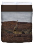 Eastern Reef Egret-dark Morph Duvet Cover