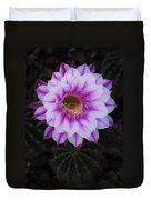 Echinopsis Duvet Cover