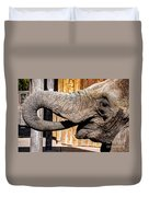 Elephant Feeding Time At The Zoo Duvet Cover