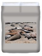 Elephant Seal Colony On Big Sur  Duvet Cover