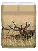 Elk Bugle Duvet Cover