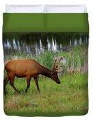 Elk Cervus Elaphus Jasper National Duvet Cover