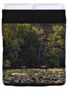 Elk Herd Crossing Buffalo National River Duvet Cover