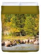 Elk Herd With Autumn Colors Duvet Cover