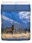 Elk In Forest, Banff National Park Duvet Cover