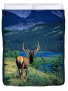 Elk In Summer By Mountain Lake Duvet Cover
