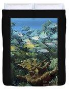 Elkhorn Coral With Schooling Grunts Duvet Cover
