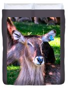 Ellipsis Waterbuck Duvet Cover