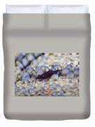 Emporer Shrimp On A Large Pin Cushion Duvet Cover