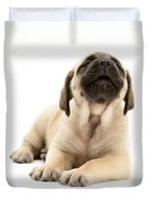 English Mastiff Puppy Duvet Cover