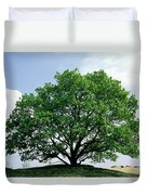 English Oak Quercus Robur In Spring Duvet Cover
