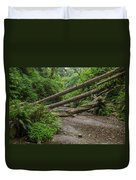 Entrance To Fern Canyon Duvet Cover