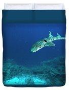 Epaulette Shark Hemiscyllium Ocellatum Duvet Cover