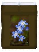 Etoiles Bleus Duvet Cover