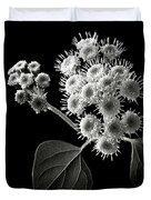 Eupatorium In Black And White Duvet Cover