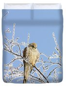 Eurasian Kestrel Falco Tinnunculus Duvet Cover