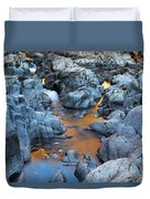 Evening Light On The Black River At Johnsons Shut Ins State Park IIi Duvet Cover