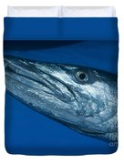 Facial View Of A Great Barracuda, Kimbe Duvet Cover