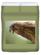 Falcon Duvet Cover