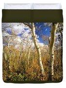 Fall Aspens Duvet Cover