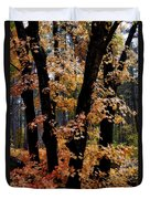 Fall Beckons  Duvet Cover