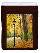 Fall Color And Lamppost Duvet Cover