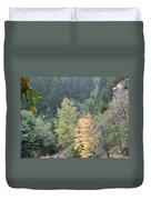 Fall Color In The Trees Duvet Cover