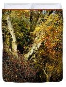 Fall Color Wall Art Landscape Duvet Cover