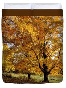 Fall Colours In Eastern Townships Duvet Cover