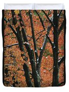 Fall Foliage Of Maple Trees After An Duvet Cover
