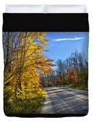 Fall Forest Road Duvet Cover by Elena Elisseeva