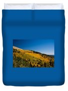 fall in Ruidoso Duvet Cover