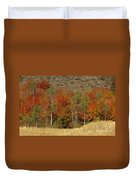 Fall In Snake River Canyon Duvet Cover