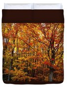 Fall Leaves On Trees Duvet Cover