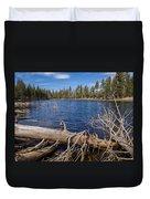 Fall Logs On Reflection Lake Duvet Cover