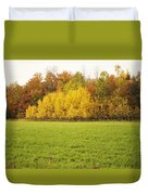 Fall Poplars Duvet Cover