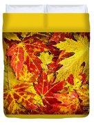 Fallen Autumn Maple Leaves  Duvet Cover
