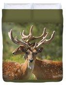 Fallow Deer Dama Dama Stags Duvet Cover