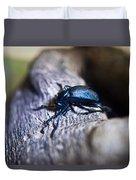 False Darkling Beetle 30 Duvet Cover