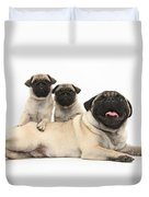 Fawn Pugs, Mother And Pups Duvet Cover