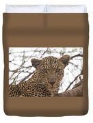 Female Leopard Close-up Duvet Cover