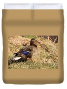 Female Mallard On A River Bank In Alaska Duvet Cover