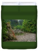 Fern Canyon Trunk Duvet Cover