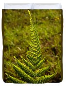 Fern Frond And Sporangia 1 Duvet Cover