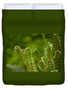 Ferns Fiddleheads Duvet Cover