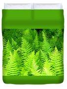 Ferns Galore Filtered Duvet Cover