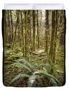 Ferns Sit On The Forest Floor Duvet Cover